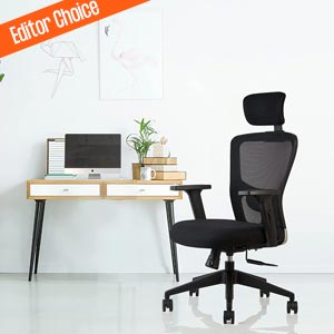 best chair for students to study long sitting from innowin jazz